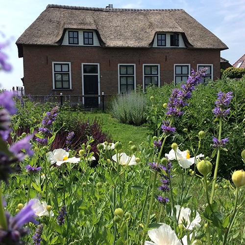 huis-tuin